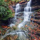 Forgotten Falls October 2012 by Aaron Campbell