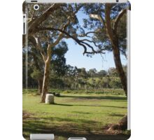 Vineyard scene iPad Case/Skin