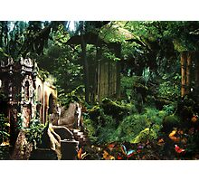Home of the Elves Photographic Print