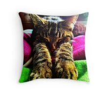 Check my Paws :) Throw Pillow