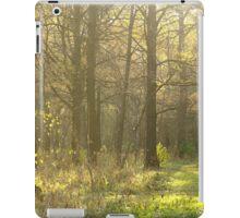 Autumn Softness iPad Case/Skin