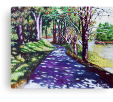 'THE TRAIL AROUND BASS LAKE #2'  Canvas Print