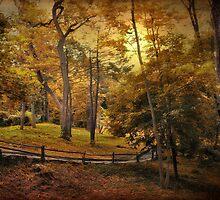Golden Trail by Jessica Jenney