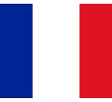 France Flag by PingusTees