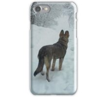 Dog in the forest iPhone Case/Skin