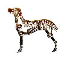Industrial Dog by Angelaook