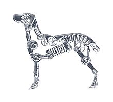 Industrial Silver Dog by Angelaook