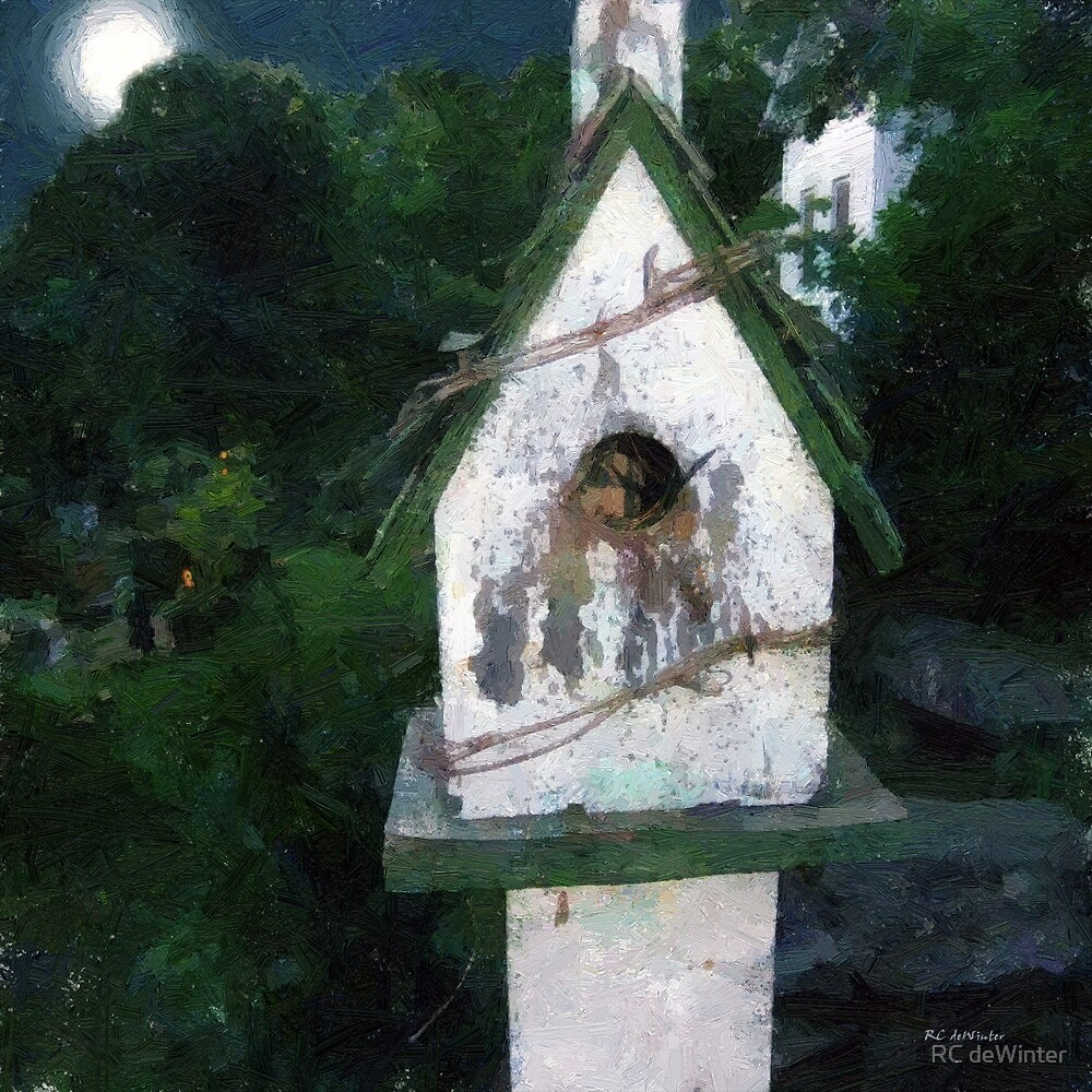 Summer Night with Birdhouse by RC deWinter