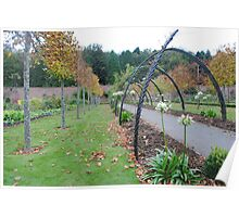 Arched Walkway and Trees Poster