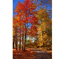 Beautiful Autumn Day Photographic Print