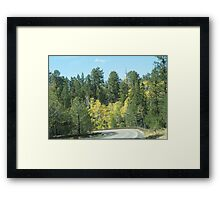 Fall Colors In Jemez Mountains Framed Print