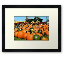 Country Pumpkin Patch ^  Framed Print
