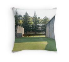 historic norfolk 6 Throw Pillow