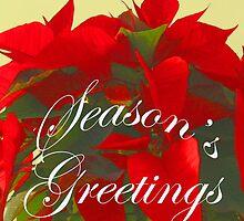 Season's Greetings, Red Poinsettia Christmas Card, ne485c by Tony Weatherman