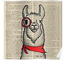 Llama with Monocle Poster