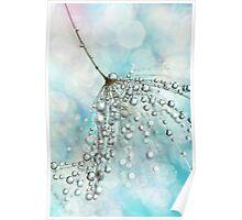 Shower Sparkles Poster