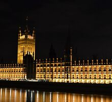 Houses of Parliament at Night by janlou