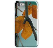 Autumn Love iPhone Case/Skin