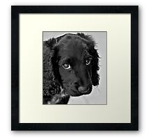 Do you still love me? Framed Print