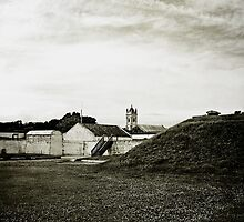 Ft. Moultrie by Widcat
