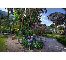 Convent Garden Photographic Print