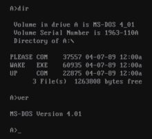 MS-DOS - PLEASE WAKE UP  by frictionqt