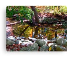 Forest rainbows Canvas Print