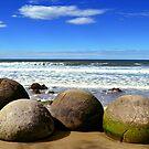 Moeraki Boulders in New Zealand by Bami