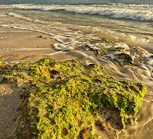 Golden Glow - Burns Beach by Daniel Carr