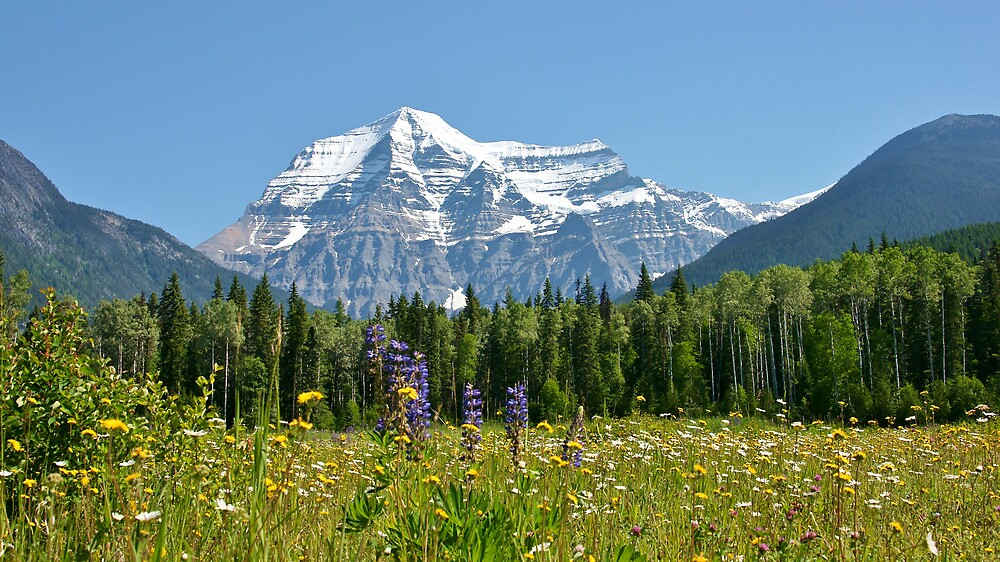 Mt Robson by roger smith