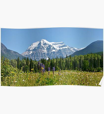 Mt Robson Poster