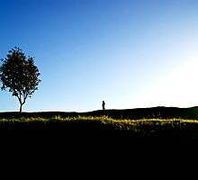 the boy and the tree... by Gregoria  Gregoriou Crowe