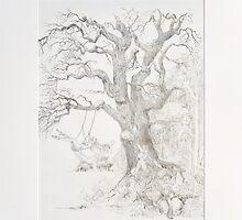 baum/tree by frank lennartz