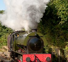 The saddle tank locomotive Walkden on the Ribble Steam Railway. by John Morris