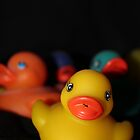 rubber duckies by Perggals© - Stacey Turner