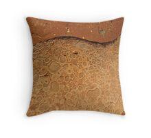 Pilbara paving Throw Pillow