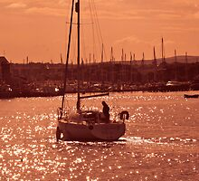 Sunset Sails by Giorgio Elesaro