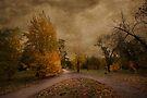 Autumn Landscape by Svetlana Sewell