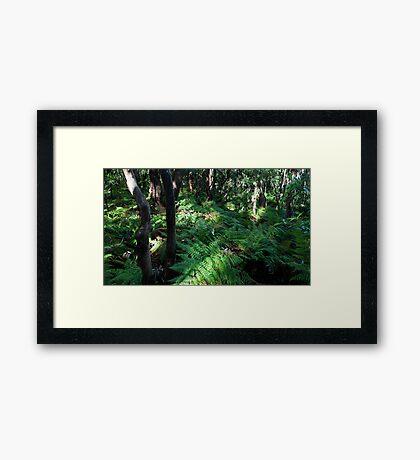 12th October 2012 Framed Print