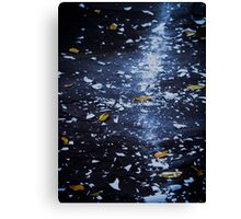 Trail of Shattered Light Canvas Print