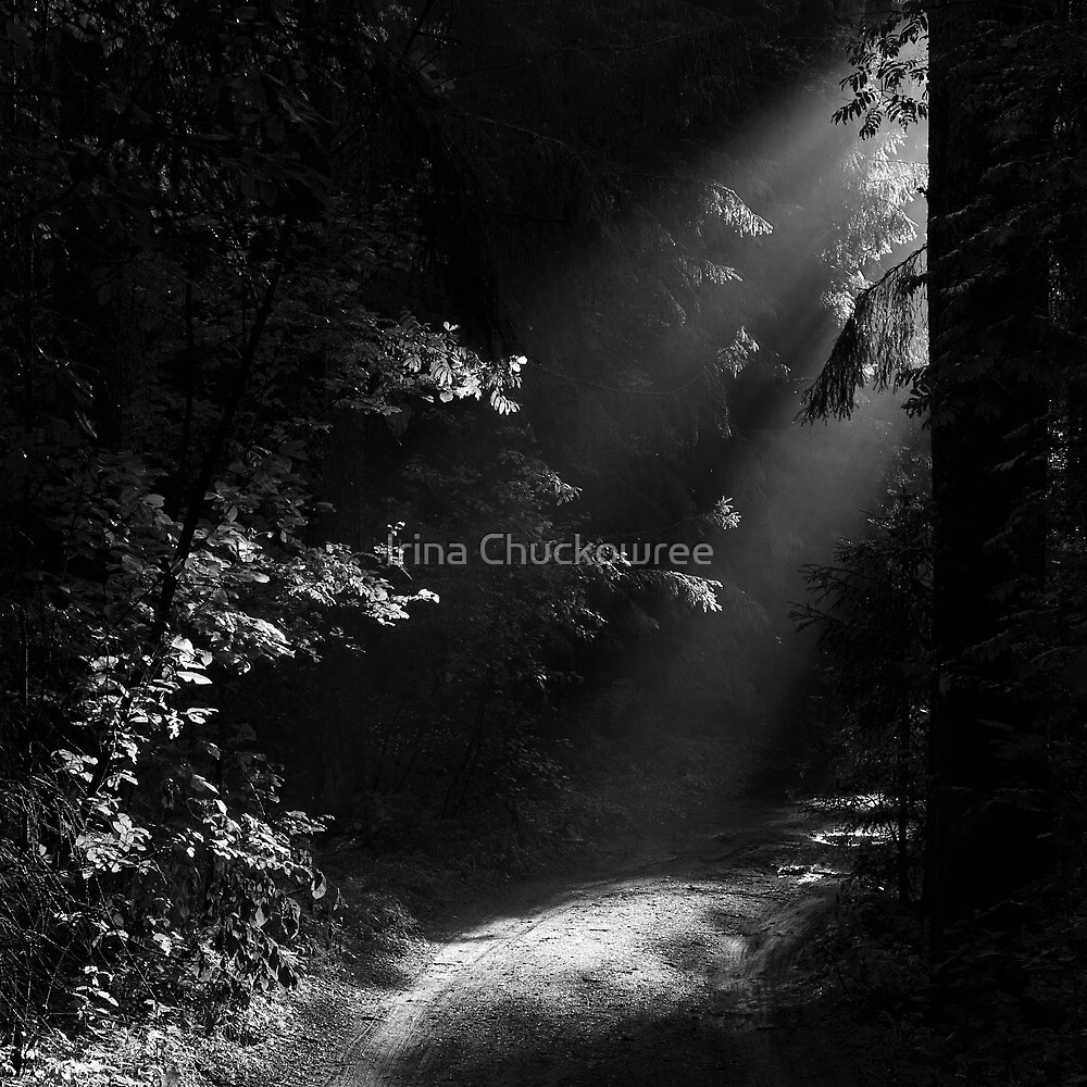 The Light at the End of the Forest by Irina Chuckowree