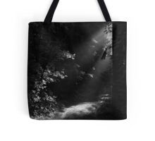 The Light at the End of the Forest Tote Bag