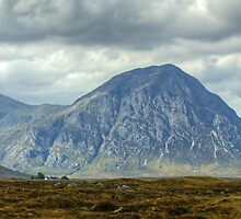 The Great Herdsman Of Etive by Jamie  Green