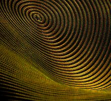 The Vortex by James Aiken