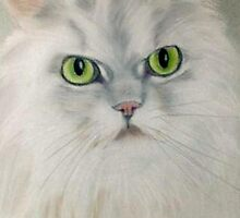 Fluffy by DianeL