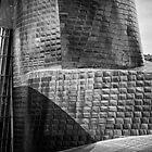 Guggenheim Bilbao by Javier Leite LIPF by Javier Leite