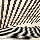 Symmetry Of Shadows by David Piszczek