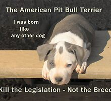 Unfair Breed Specific Legislation by Ginny York