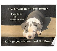 Unfair Breed Specific Legislation Poster