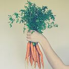 Fresh Carrots by Olivia Joy StClaire